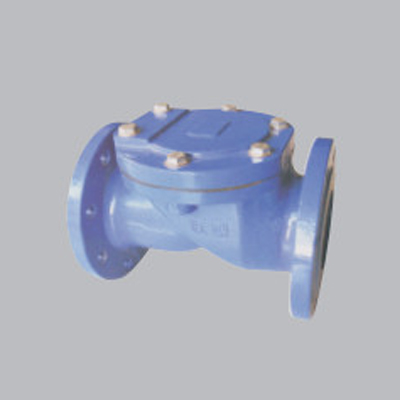 Flanged-Rubber-Sheet-Check-Valve-amd1
